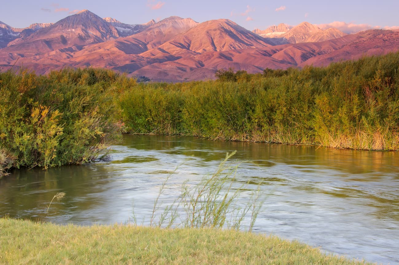 Owens River Headwaters Wilderness