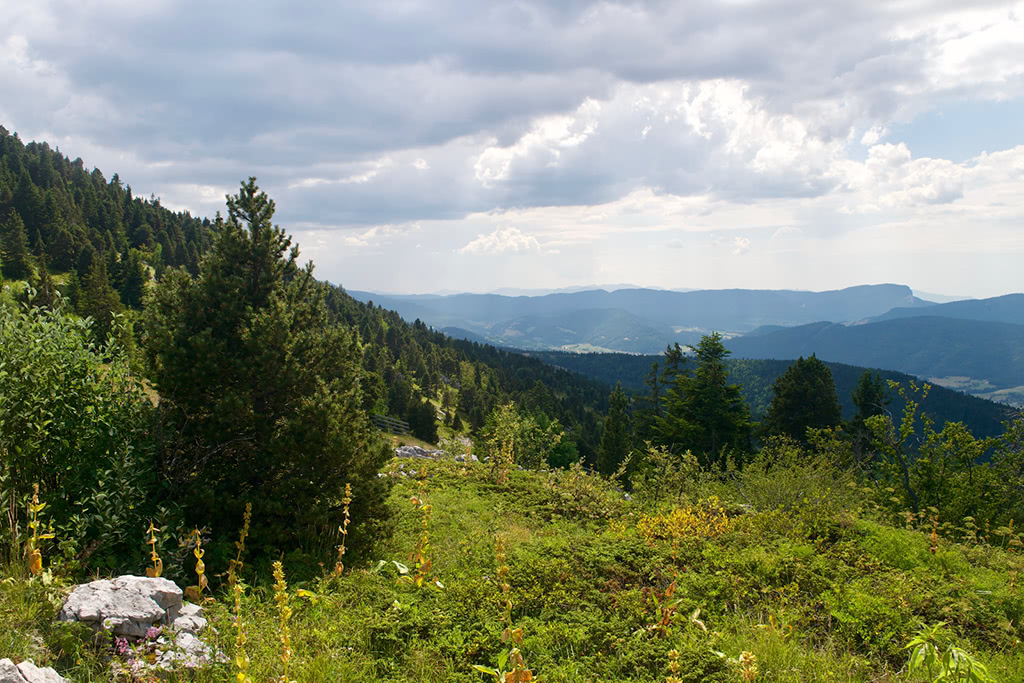 View across the Vercors plateau