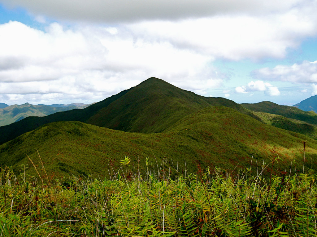 Photo №1 of Mont Humboldt