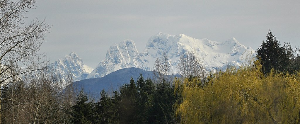 Photo №1 of Mount Robie Reid W0
