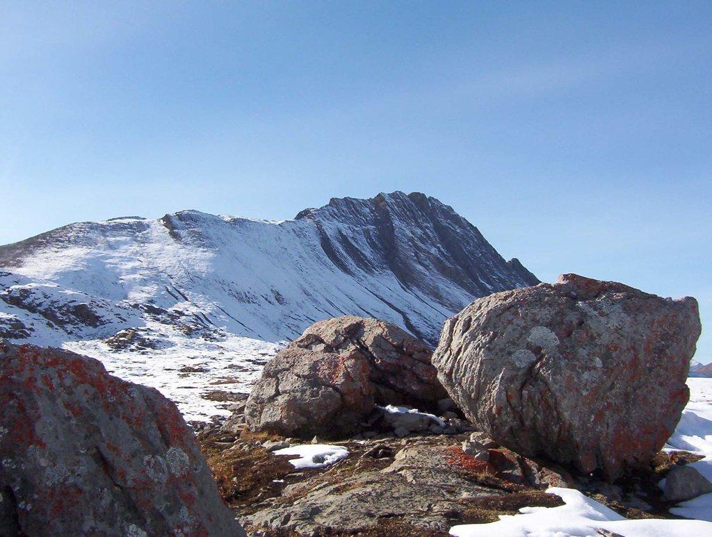 Photo №1 of Mount Wilcox