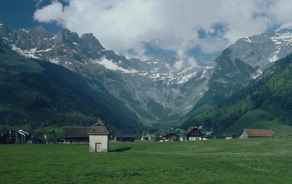 Photo №3 of Grosser Sättelistock