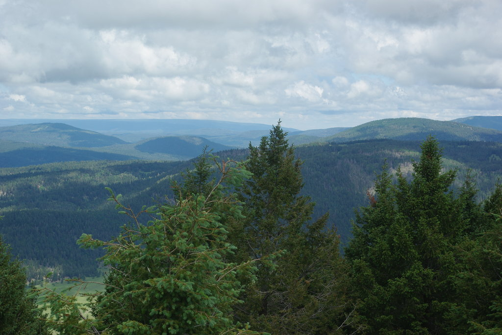 Photo №1 of Cerro Grande