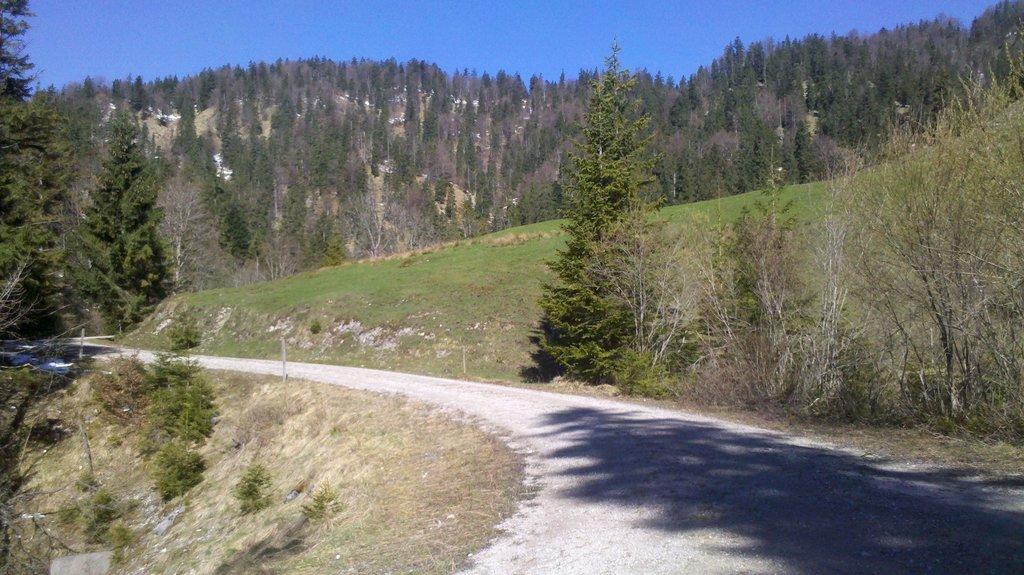 Photo №1 of Brandkopf