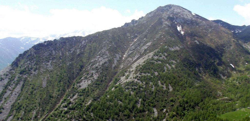 Photo №1 of Monte Plu