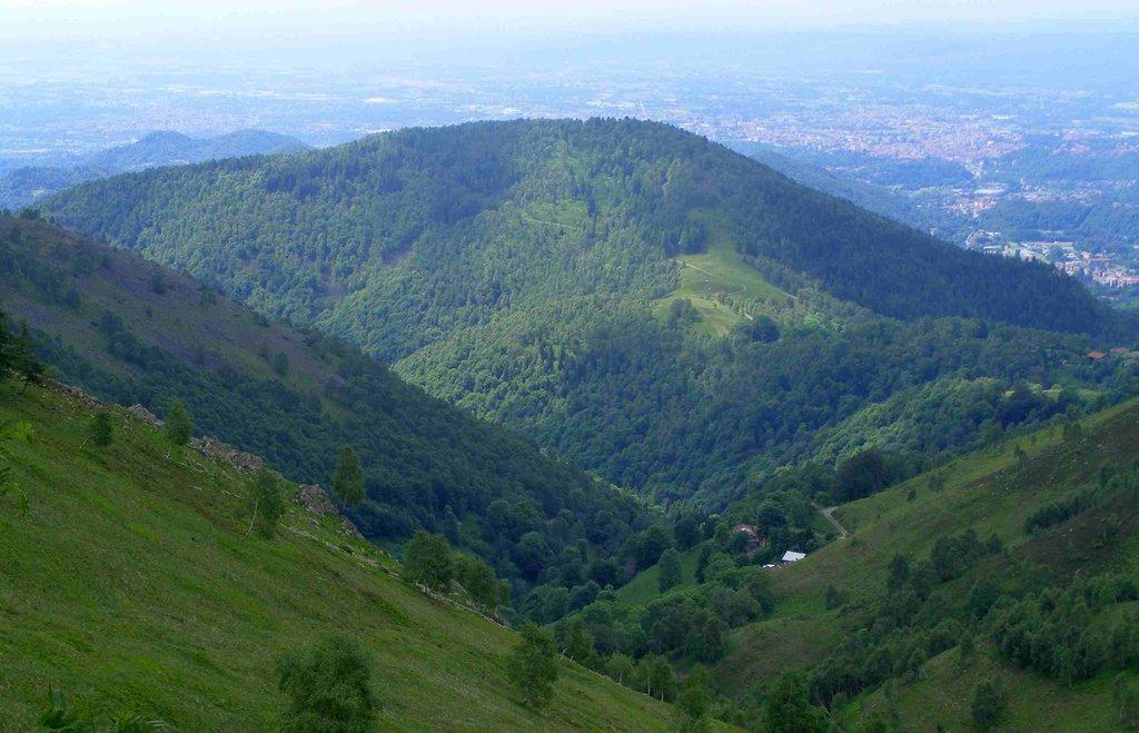 Photo №1 of Monte Casto