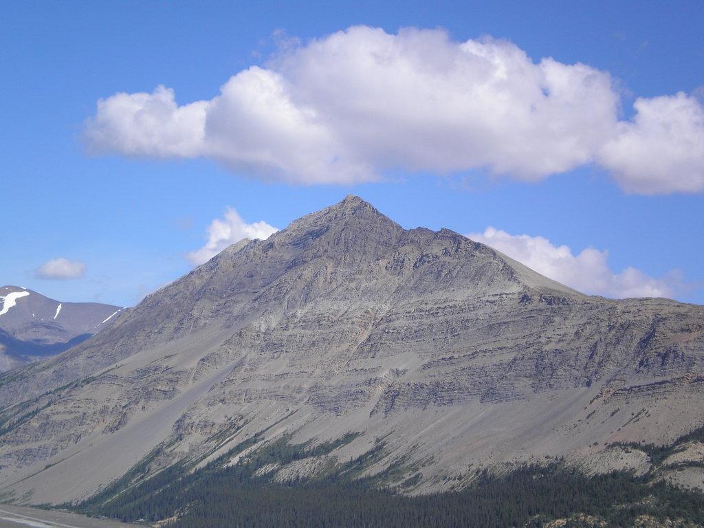 Photo №3 of Mount Wilcox