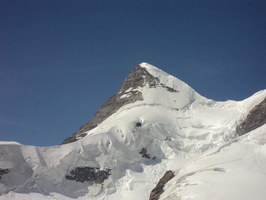 Photo №1 of Lauihorn