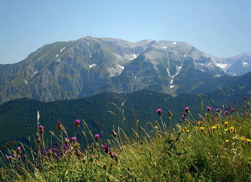 Photo №1 of Monte Amaro