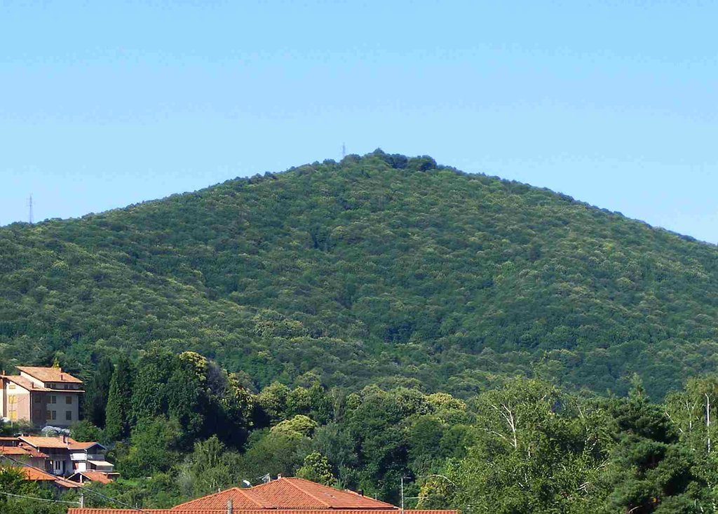 Photo №1 of Monte Rovella