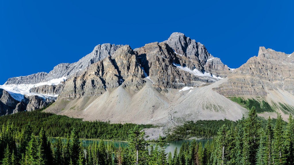 Photo №1 of Crowfoot Mountain