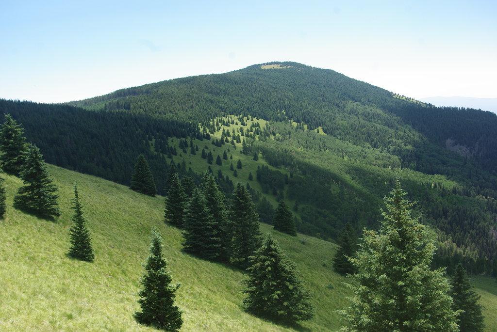 Photo №2 of Chicoma Mountain