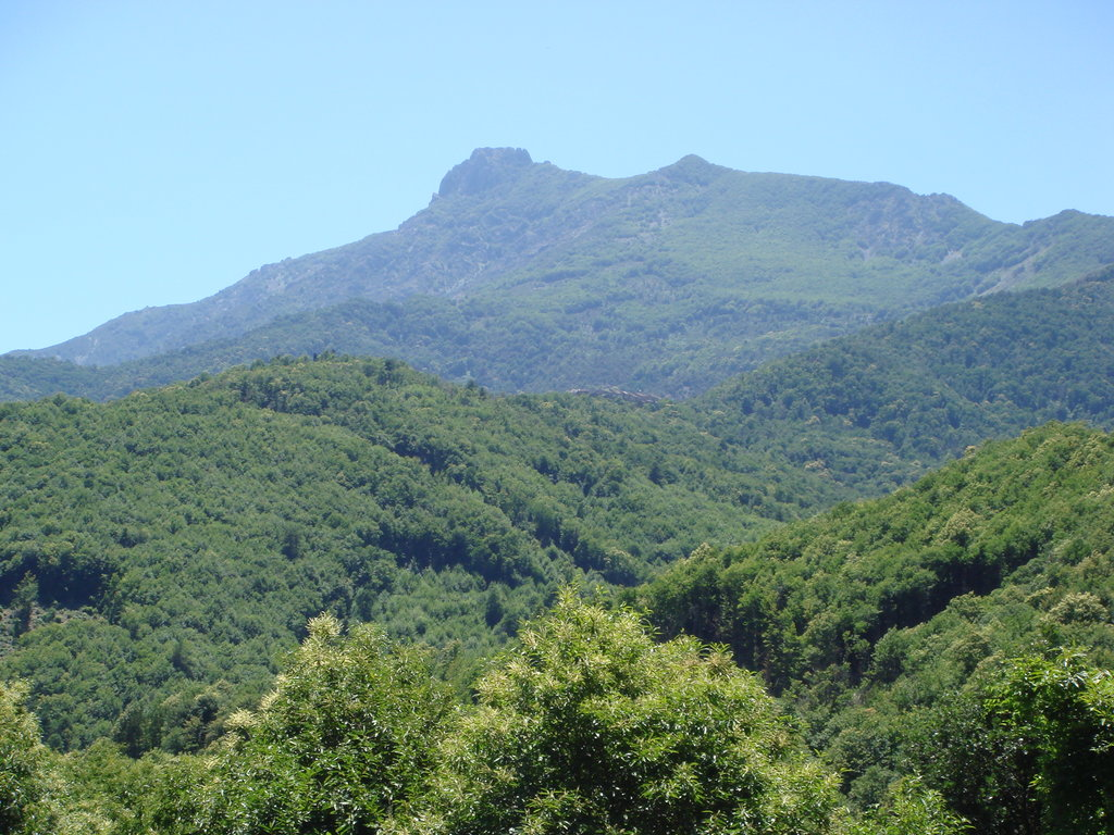 Photo №2 of Monte San Petrone