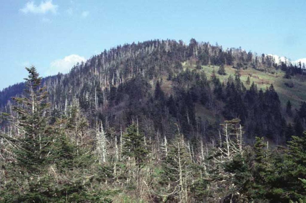Tennessee 4500-foot Peaks