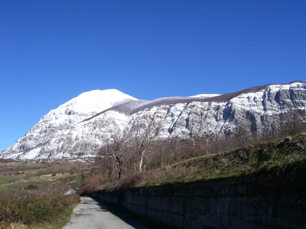 Photo №1 of M. Alpi