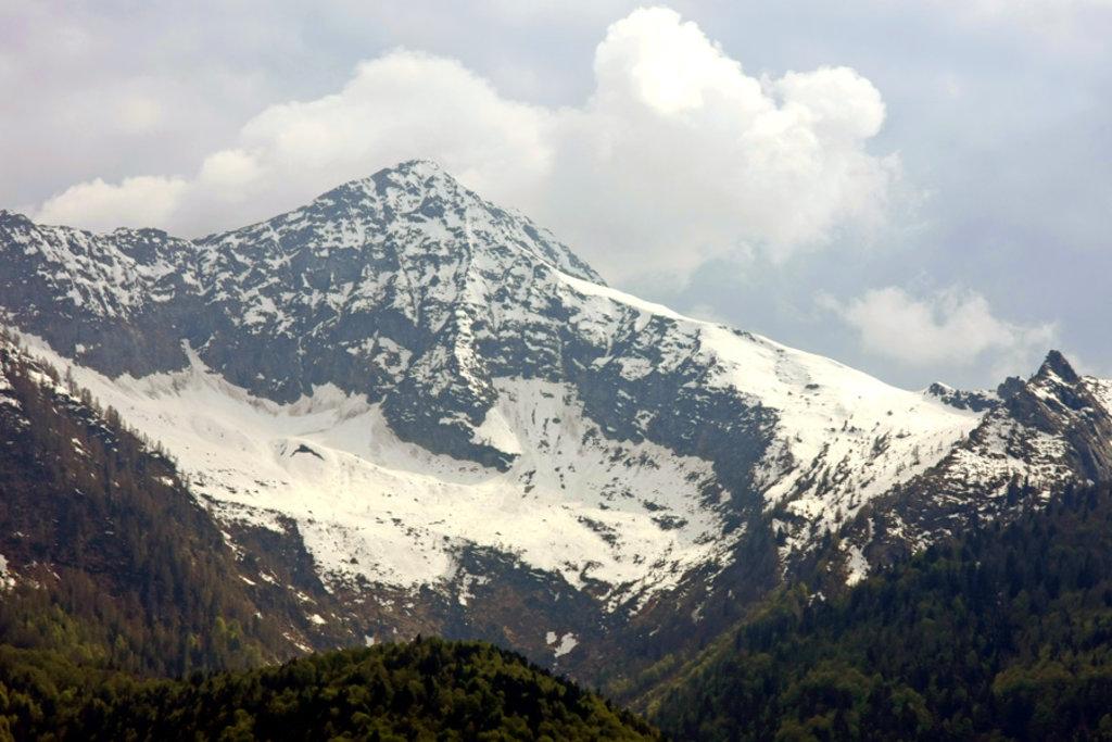 Photo №1 of Monte Togano