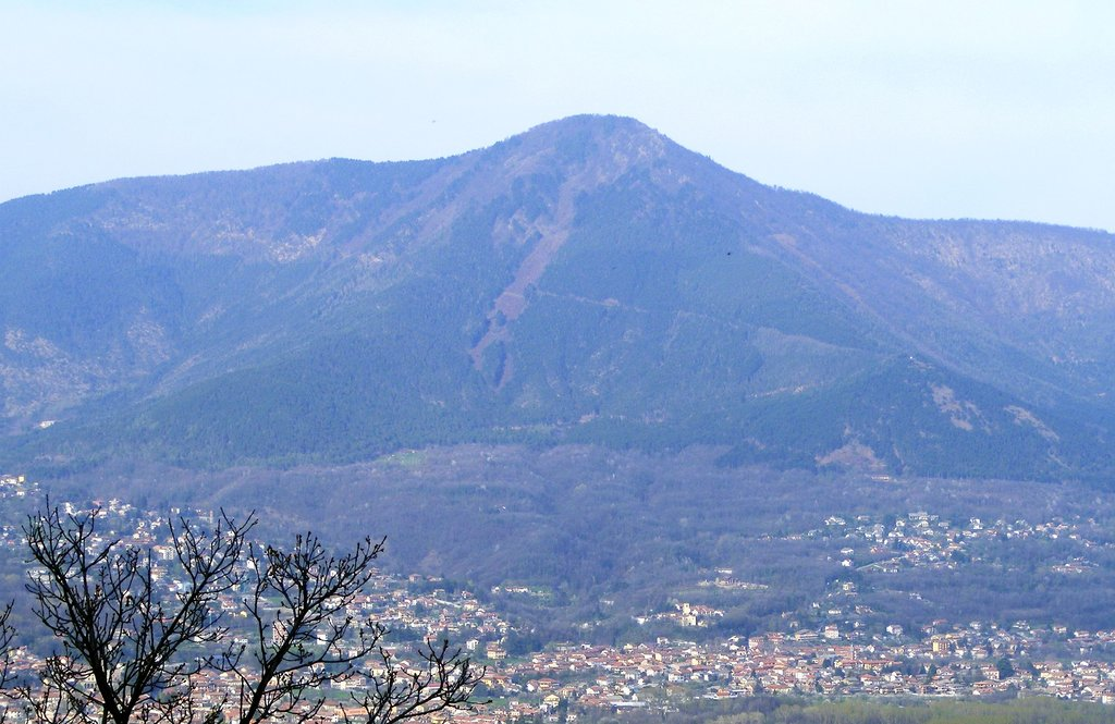 Photo №1 of Monte Curt