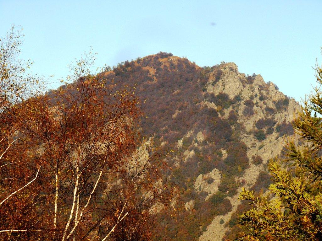 Photo №1 of Monte Freidour