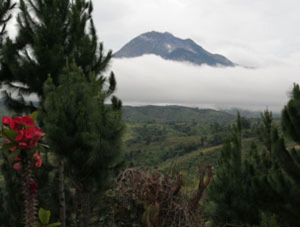 Photo №5 of Mount Apo