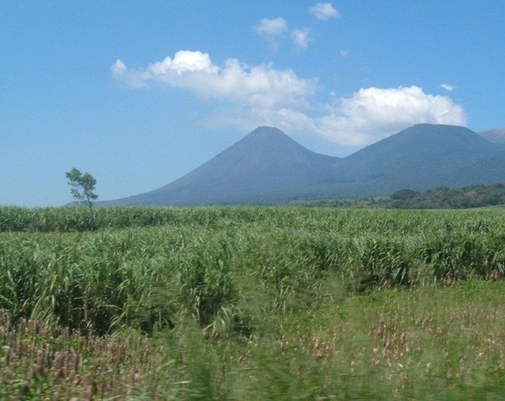 Photo №1 of Cerro Verde