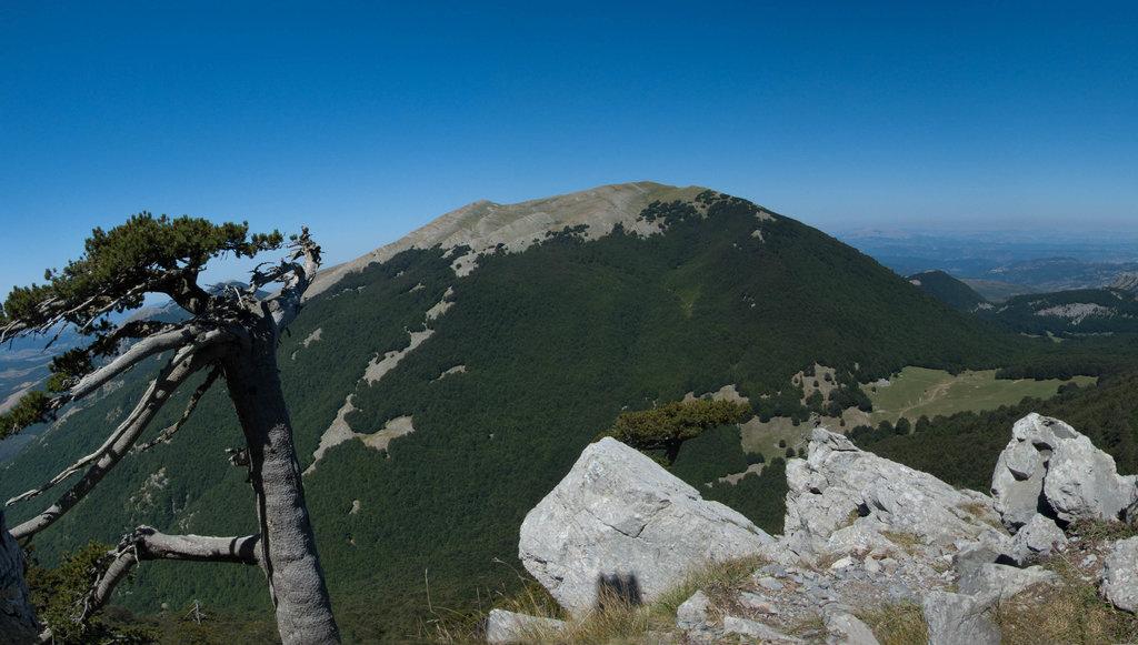Photo №1 of Serra del Prete