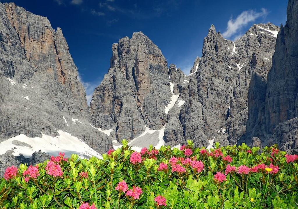 Adamello—Brenta Nature Park