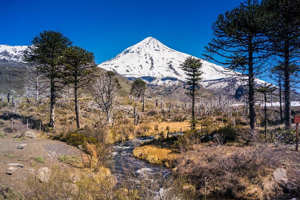 Reserva de Biósfera Andina Norpatagonica