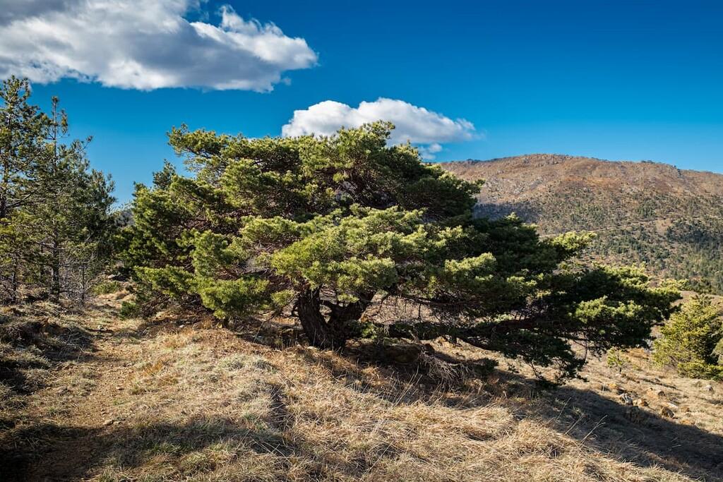 Parco Naturale delle Capanne di Marcarolo