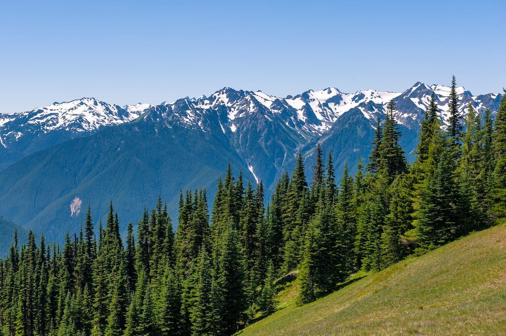 Olympic National Park in Washington. Jefferson County, Washington