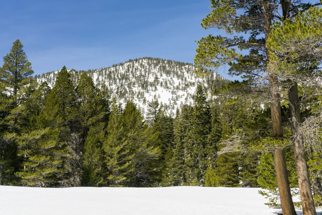 Mount San Jacinto State Wilderness