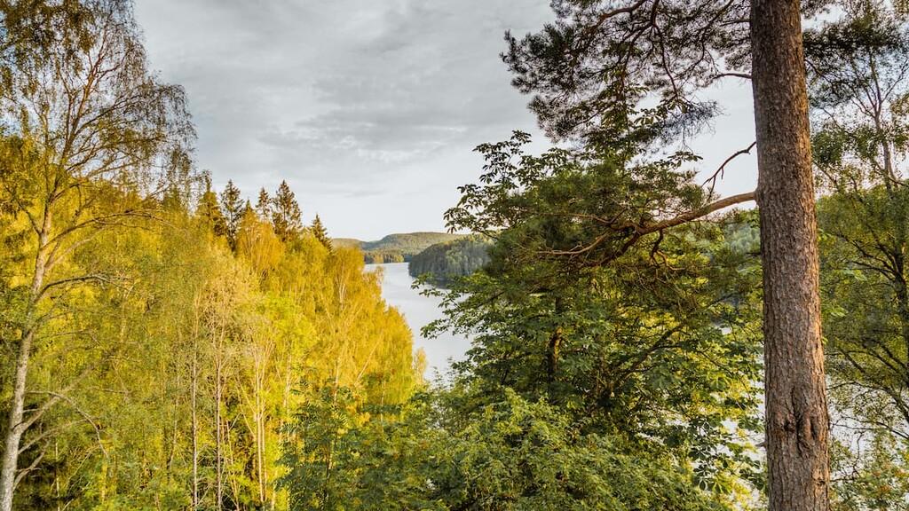 Østmarka naturreservat