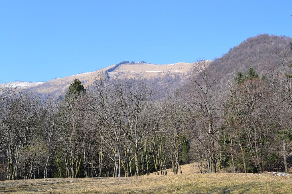 Photo №1 of Monte Bolettone