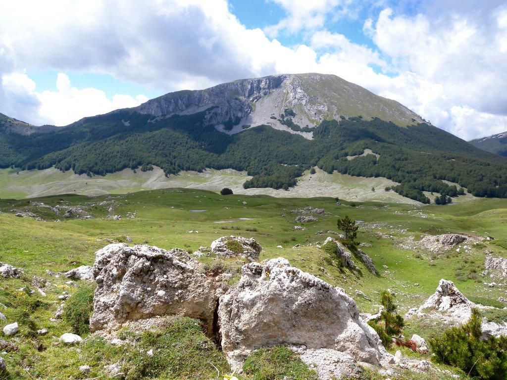 Photo №2 of Pollinello