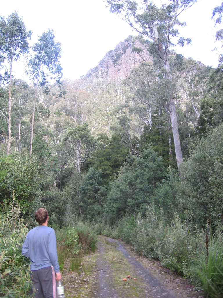 Great Western Tiers Conservation Area