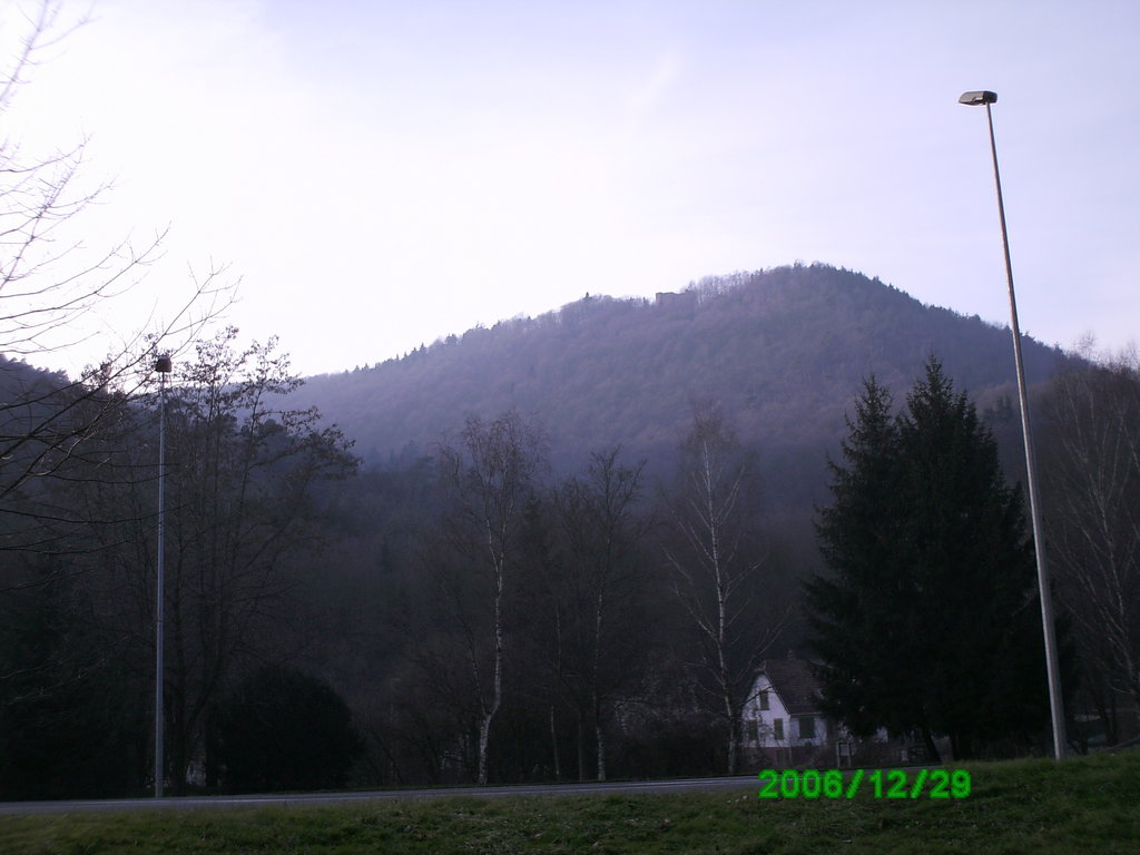 Photo №1 of Reisberg