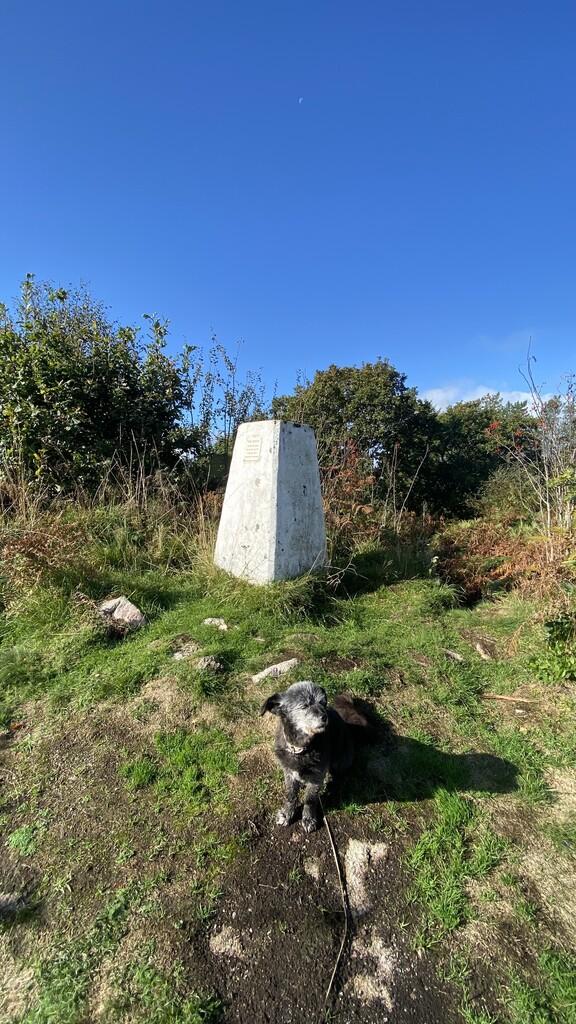 Moyle Hill image