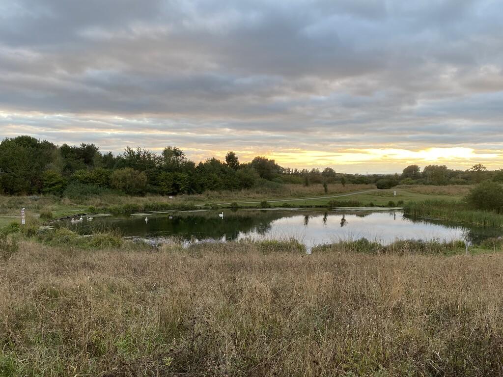 Dukes Pond image