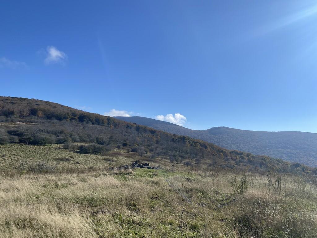 Balsam Mountain image