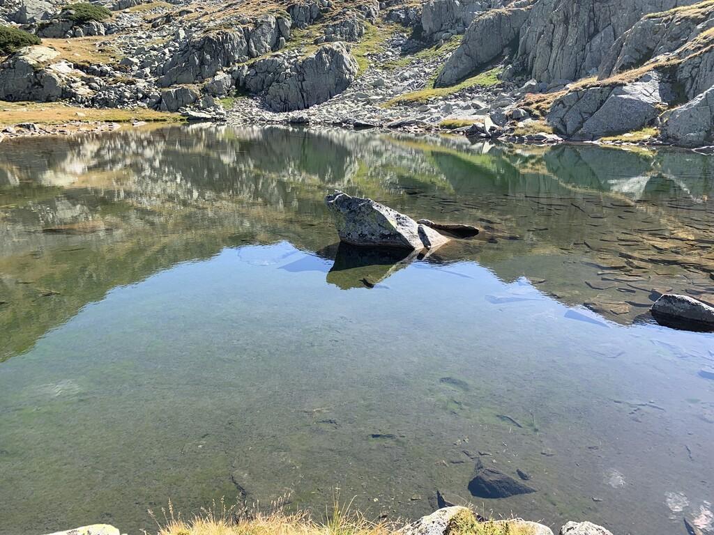 Lacul Mutătorii image