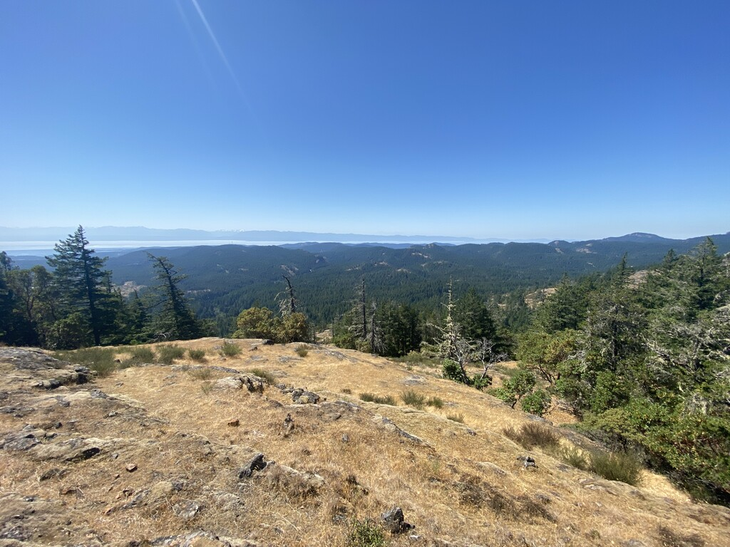 Mount McDonald image