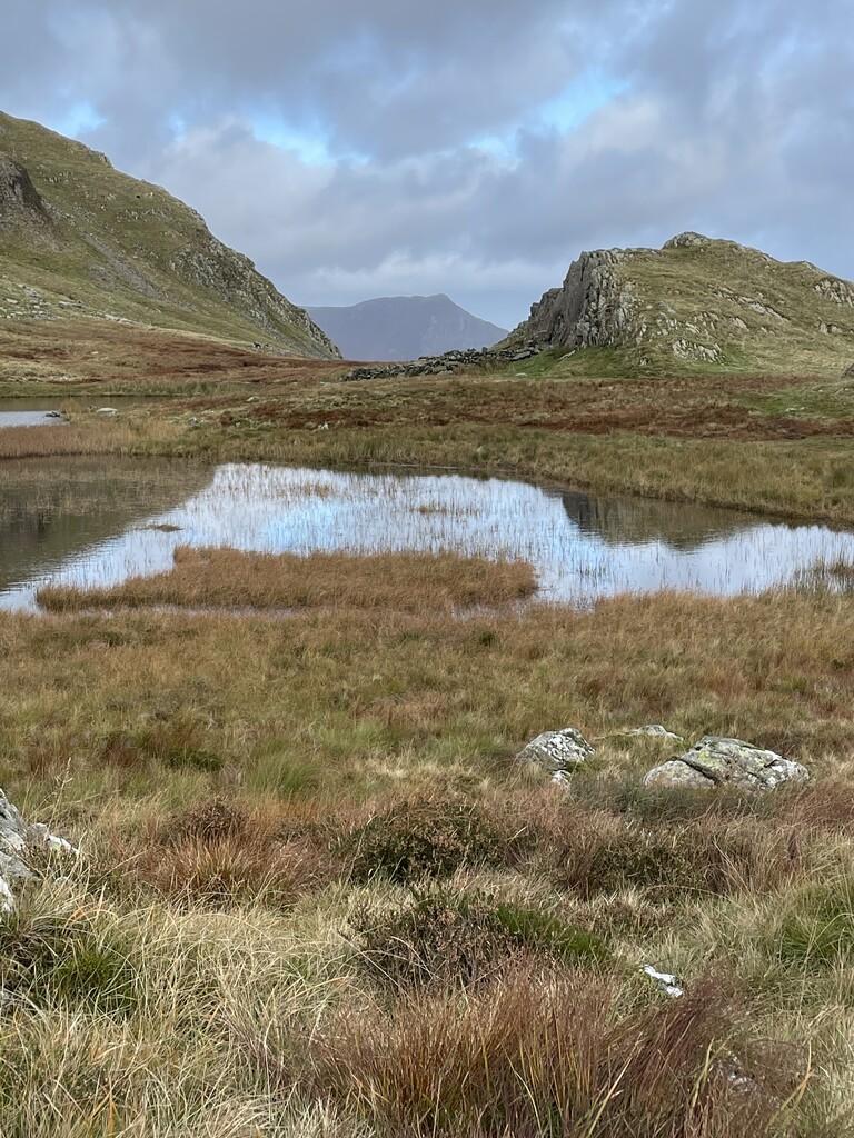Dalehead Tarn image