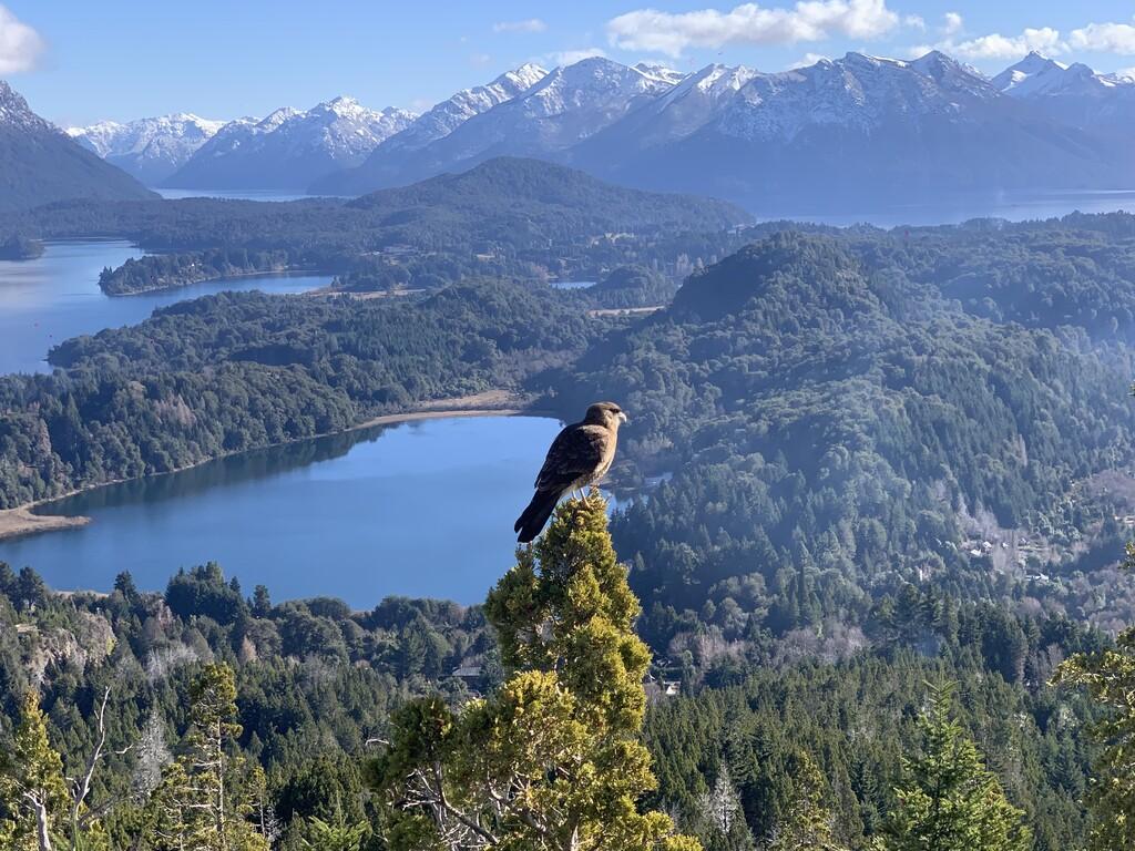 Cerro Campanario image