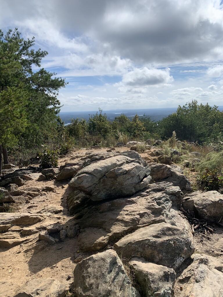 Pine Mountain image
