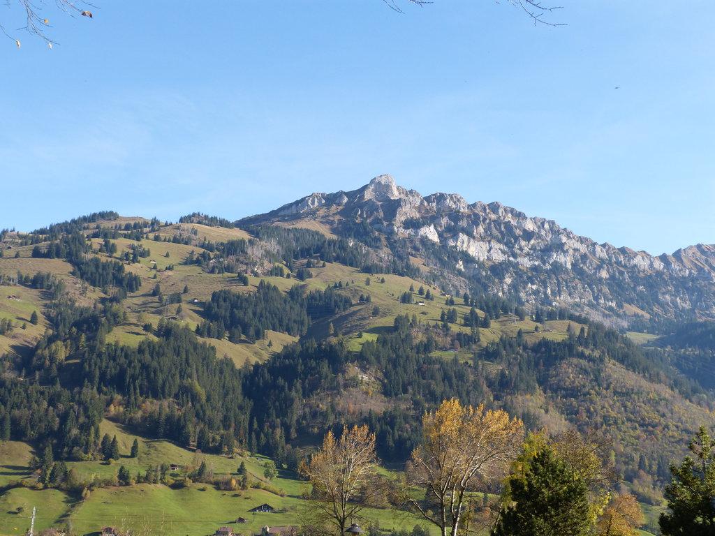Photo №1 of Gehrihorn