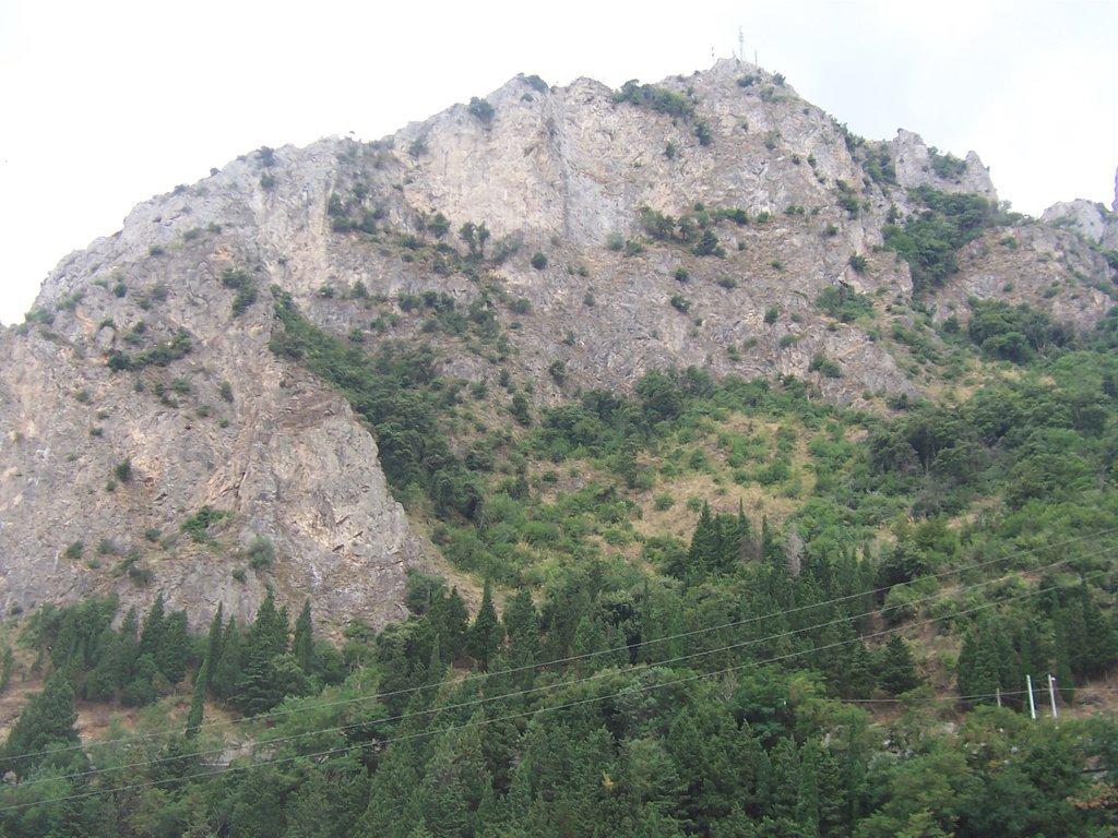 Photo №1 of Monte Stella