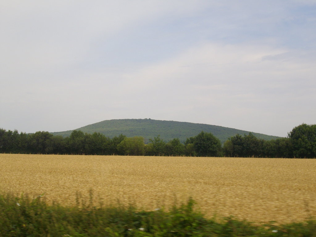 Photo №1 of Butte Chaumont