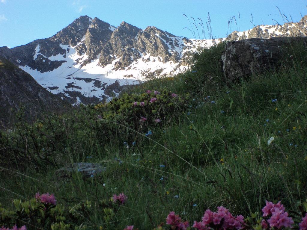 Photo №1 of Monte Barifreddo