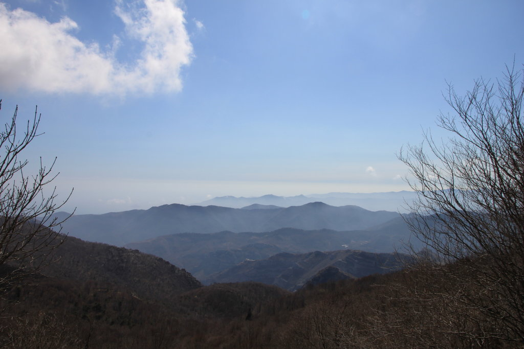 Photo №1 of Monte Carmo
