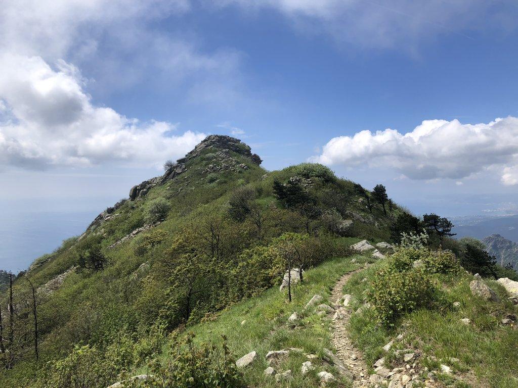 Photo №3 of Monte Argentea