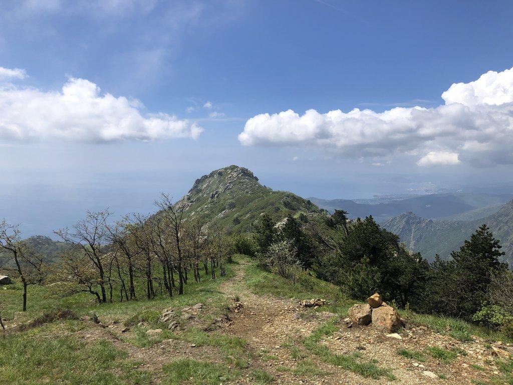Photo №1 of Monte Argentea